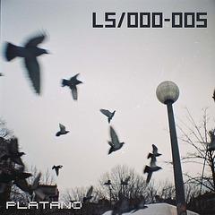 005 - Mono