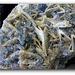 Fluorite bleue sur Barytine crêtée- La Barre