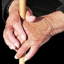 Mãos vividas