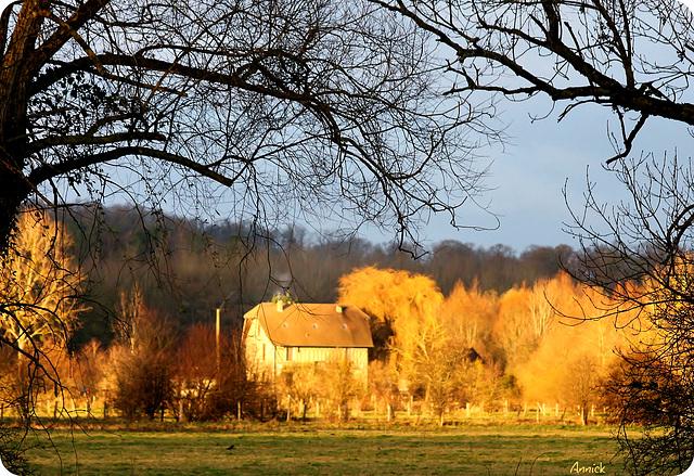 maison soleil dans l'automne