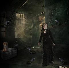 La Dame aux corbeaux !