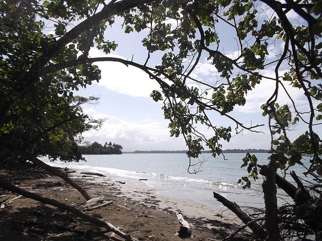 Caribbean ephemeral paradise /Paradis éphémère des Caraïbes