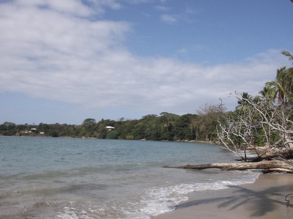 Caribbean ephemeral paradise / Paradis éphémère des Caraïbes