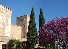 Dans les jardins de l'Alhambra
