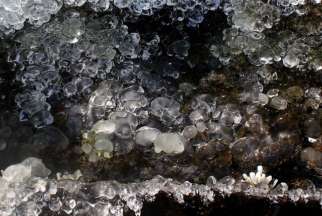 Cristallisations