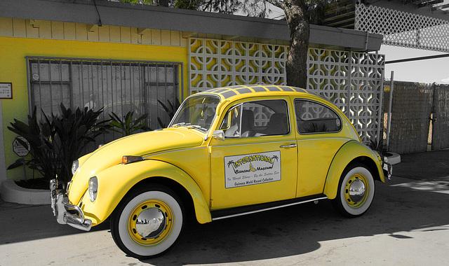 International Banana Museum (8489A)