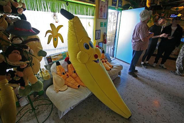 International Banana Museum (8492)