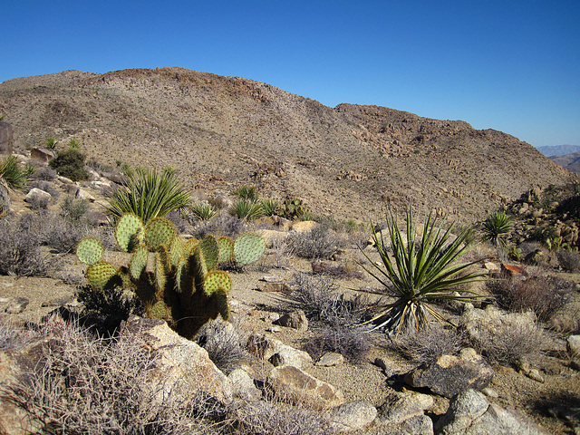 Hike To Eagle Cliff Mine (3940)