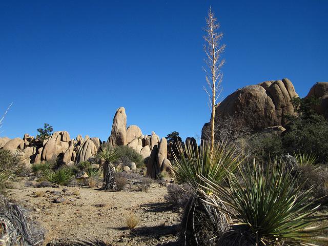 Hike To Eagle Cliff Mine (3944)