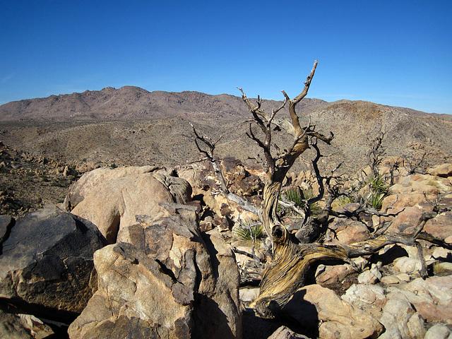 Hike To Eagle Cliff Mine (3947)