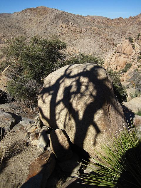 Hike To Eagle Cliff Mine (3964)