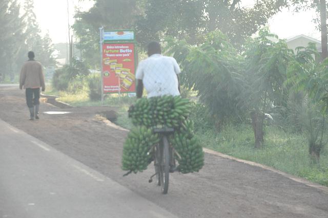 Ni troviĝas en la regiono de la bananoj. Ĉie videblas bananujoj, kaj homoj ĉiel portantaj bananojn