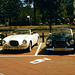 Two Volvo's P 1900