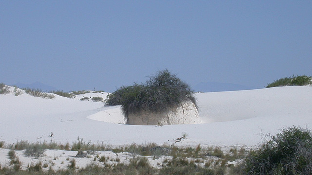 White Sands National Monument 3206a