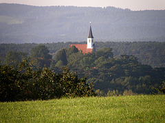 353/365 - Church in the forests