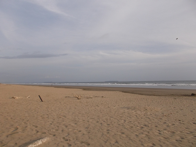 Plage panaméenne / Panamanian beach / Playa tranquila de Panama.