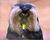 Portrait Wanderu (3)
