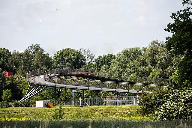 20140519 3393VRAw [D~OB] Brücke, Ripsdorfer Wald