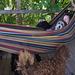 Gwen & Shadow in the hammock