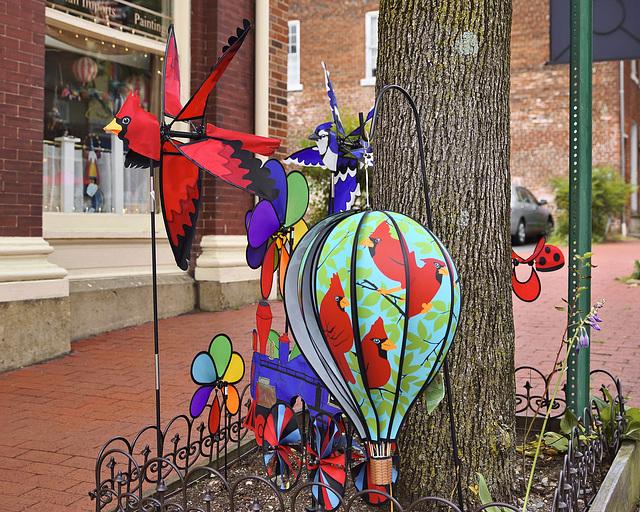 The State Bird – William Street at Princess Anne Street, Fredericksburg, Virginia