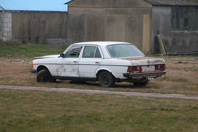 Mercedes-Benz W123-300D on its final resting place