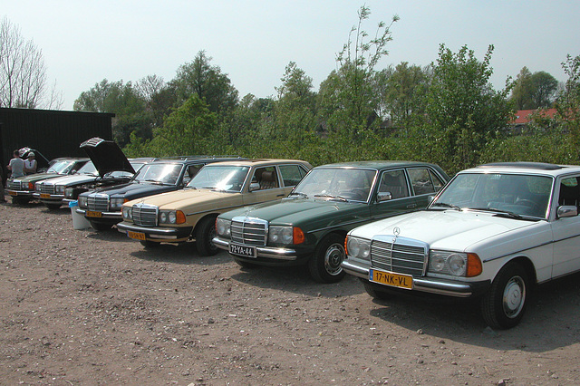 At a Mercedes W123-meeting