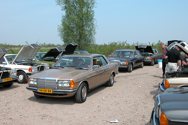 I spend my saturday afternoon at a Mercedes W123-meeting