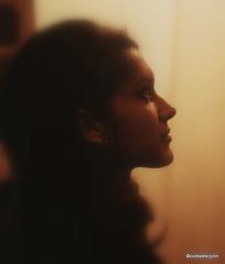 Evening silhouette profile
