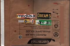 Medusa Dreams Herself Healed (back)