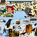 collage envelope #1: crow mania