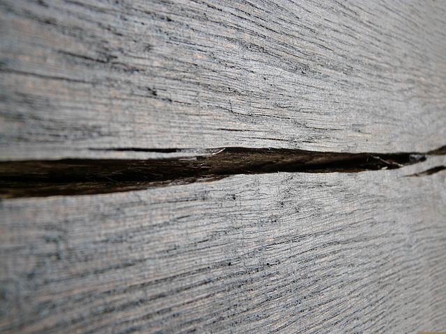 Dry Wood Texture 2
