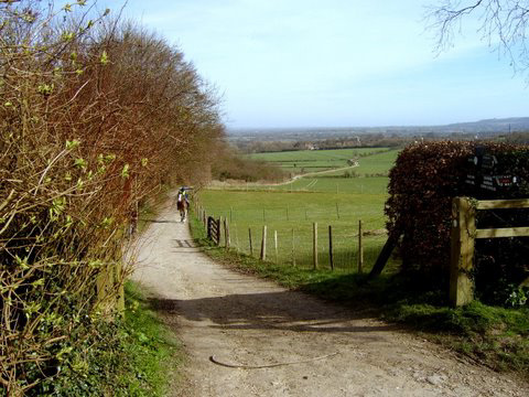 A Chiltern View