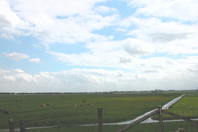 A day in the country: flat Dutch countryside
