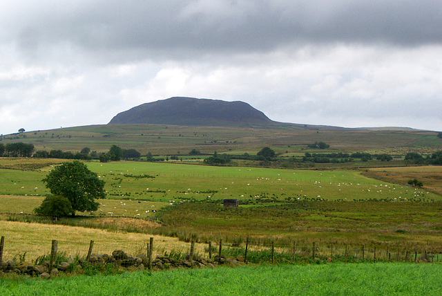 Happy St. Patrick's Day from Slemish