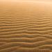 Saharan Sand Ripples