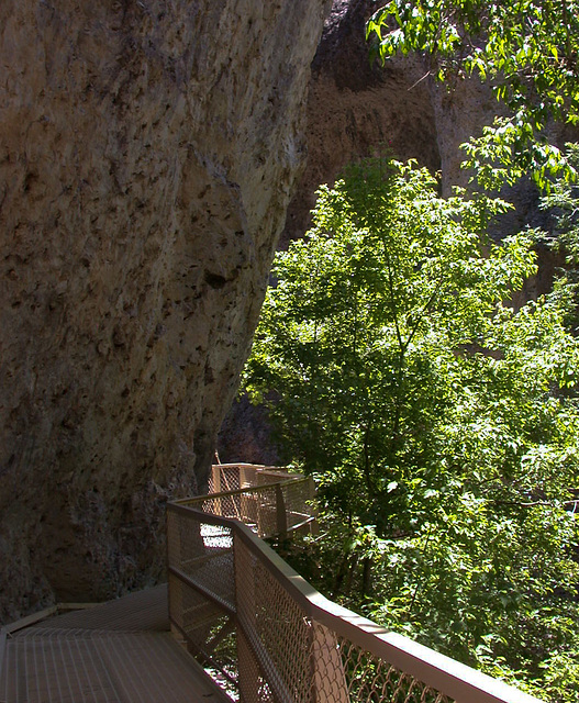 Catwalk, Gila National Monument, NM (3343)