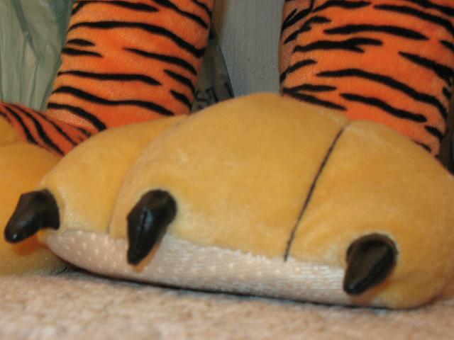 Big Tiger Paws