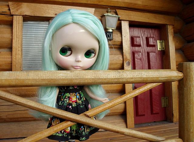 Anemone at Pocahontas mini cabin