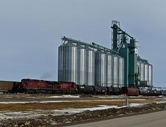 Grain elevator, Blackie, Alberta