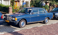 Some old stuff: 1984 Mercedes-Benz 200 (W123) with horseshoe on the grill