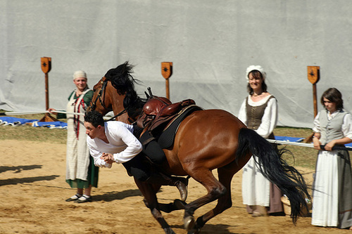 Equestrian display