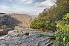 I'm Sittin' On Top of the World – Blackwater Falls State Park, Davis, West Virginia