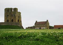 Scarborough Castle & meadow