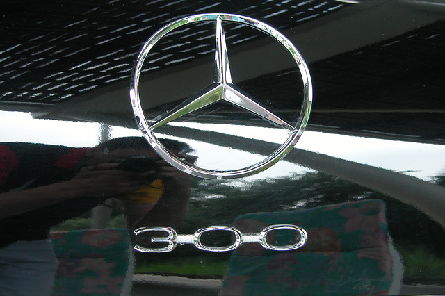 Mercs at the National Oldtimer Day: badge of the 1959 Mercedes-Benz 300 Dora