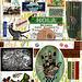 mail art envelope for june