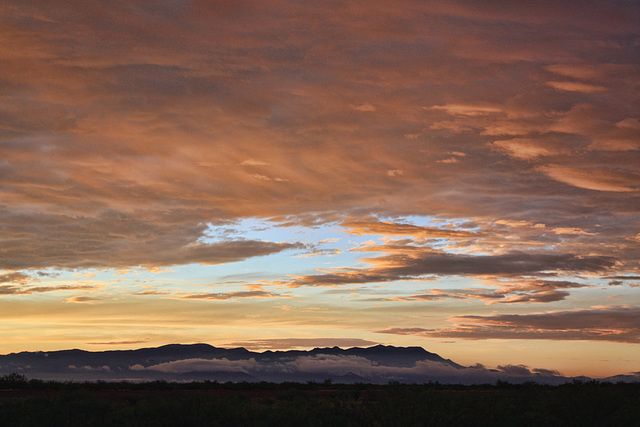 The Mule Mountains At Sunrise