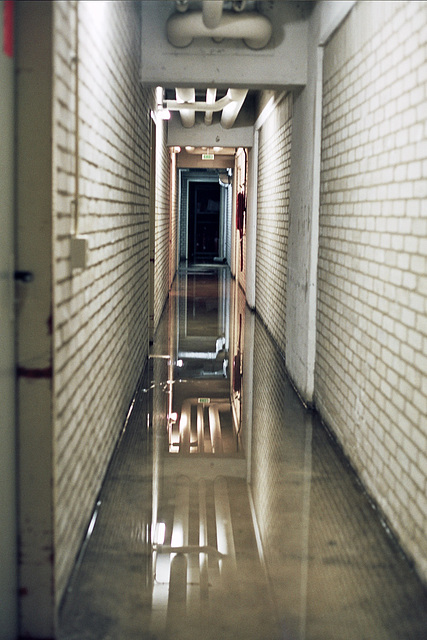 Solving our archive space problem at work: flooding the cellar