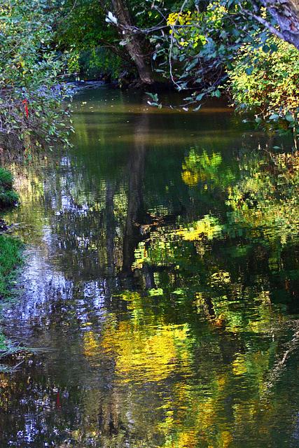 Fishtrap Creek Autumn Reflections