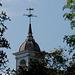 St John's dome through the trees