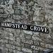 To Hampstead Grove